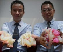 two-doctors-holding-heart